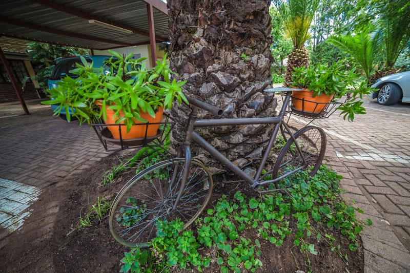 Acaia-Guest-House-Home---Bycicle-in-Garden-as-Flower-pot